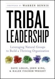 Tribal Leadership book cover